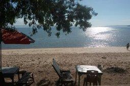 Keanekaragaman Hayati Laut yang ada di Pulau Karimun Besar