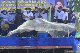 Panen udang vaname di Tambak Lantamal V Surabaya