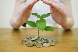 Jangan takut memulai jika ingin investasi atau berbisnis