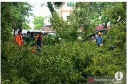 BMKG Lampung ingatkan masyarakat pesisir waspadai fenomena angin kencang