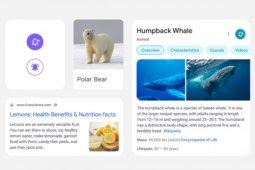 Google mendesain ulang hasil pencarian di seluler