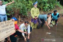 Kunjungi Natuna, Gubernur Jambi tanam bakau