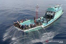 Pengakuan global, tuna Indonesia raih  ekolabel MSC lagi