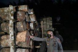 Tiga pemodal pembalakan liar Taman Nasional Berbak ditangkap polisi