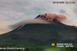 Awan panas Gunung Merapi meluncur sejauh 1,9 km