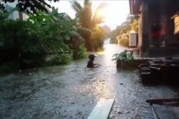 Pekon Sukarame Pesisir Barat dilanda banjir bandang