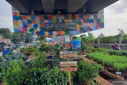 """Urban Farming"" tak sekadar  manfaatkan lahan kosong"
