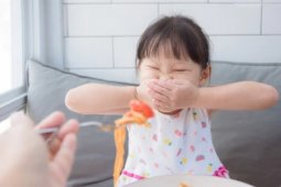 Children's picky eating habits linked to maternal gestational choices
