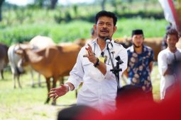 Jeneponto should strive to become quality agriculture center: minister