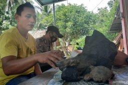 Warga Padang Pariaman temukan batu meteor seberat 8 Kg di kebun?