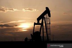 bahas peningkatan produksi, Minyak sedikit lebih rendah saat OPEC+ thumbnail