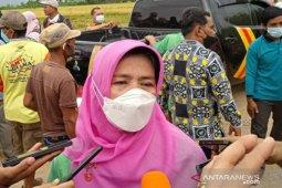 Dinas Pertanian Kota Kendari targetkan petani panen tiga kali setahun