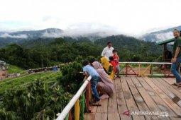 """Melihat wisata alam """"kebun di atas awan""""  di Konawe Utara"""