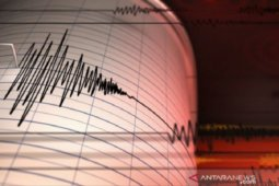 BMKG: Aktivitas sesar aktif utara Graben Aru sebabkan gempa Papua Barat