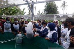 Pemkab Donggala perkenalkan budidaya perikanan  metode bioflok