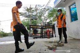 Tim Animal Rescue tangkap 60 ular berbahaya thumbnail