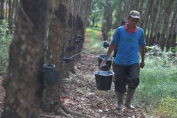 BPS: Nilai ekspor Sumatera Selatan merosot Mei 2021