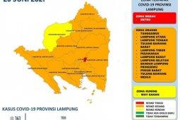 Dinkes: Tiga daerah sumbang kasus harian COVID-19 terbanyak di Lampung