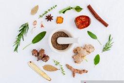 Belum ada obat herbal Indonesia guna lawan COVID-19