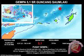 Gempa bumi berkekuatan 7,7 SR guncang Maluku Tenggara Barat