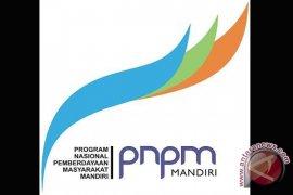 PNPM lingkungan kembangkan pertanian organik