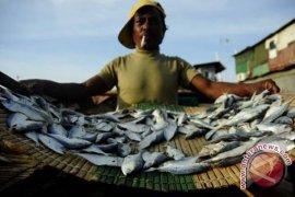 Pasokan ikan laut berkurang akibat cuaca buruk