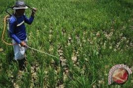 DPRD gagas raperda irigasi untuk selamatkan lahan pangan