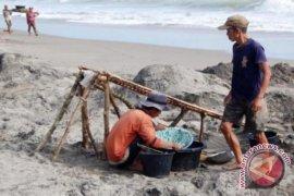 Mukomuko sita peralatan penambang emas ilegal