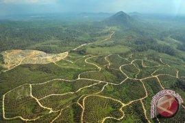 Bappeda : Bengkulu Utara penyumbang emisi tertinggi