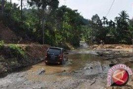 Tiga jalur ke Kerinci rawan pohon tumbang
