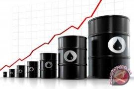 Harga Minyak Dunia Turun Karena Saudi Ragu Batasi Produksi