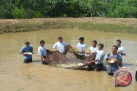 Olahan Ikan Kapuas Hulu Miliki Potensi Ekspor