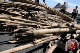 10 ton rotan ilegal diamankan di Bangko