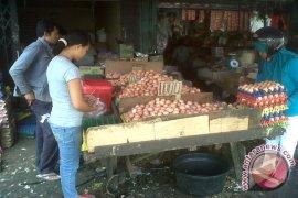 Harga telur ayam di capai Rp1.700/butir