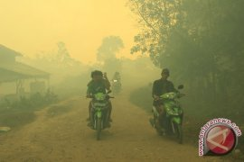 BKSDA Bengkulu berhasil atasi kebakaran hutan cagar alam