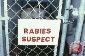 Petugas Kesehatan Hewan Dilatih Tangani Rabies