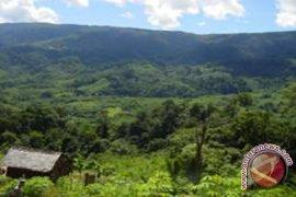 Selamatkan Pegunungan Meratus
