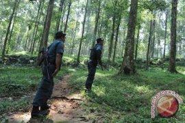 Pengelolaan Hutan Pelawan Namang Diserahkan ke Pemkab