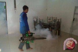 Kasus DBD Masih Terjadi Meski Fogging Gencar di Belitang Hilir