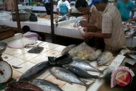 Kebutuhan Ikan Air Tawar di Sintang Meningkat