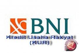 Penyaluran KUR BNI Nunukan Rp17,2 Miliar