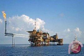 Pemerintah turunkan harga gas bagi tujuh industri