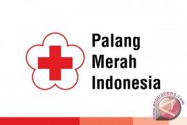 Selama Ramadhan Persediaan Darah PMI Balikpapan Menurun