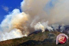 BMKG: Potensi Kebakaran Lahan di Kaltim Tinggi