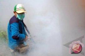 Dinkes Bangka Barat Optimalkan Pemberantasan Sarang Nyamuk