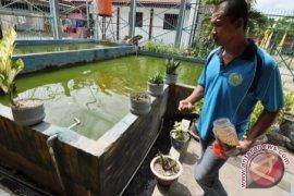 DKP Babel Latih Petani Membuat Pakan Ikan