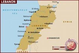 Ulama Lebanon Puji Sikap Moderat Umat Islam Indonesia