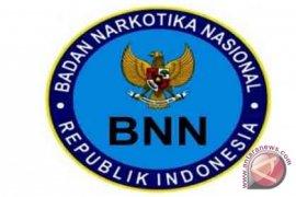 BNN : Pembangunan Berwawasan Cegah Peredaran Narkoba