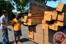 Dunia Akui Indonesia Perangi Ilegal Logging