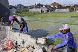 Edo Kondologit Sayangkan Alih Fungsi Lahan Di Bali